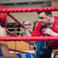 наставление между раундами :: Александр Катаев