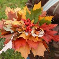 Осенняя пора :: Katherine Mozgo