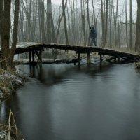мост :: Алексей Мусатов