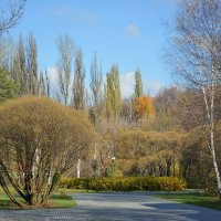 Осень. Измайловский парк. :: Геннадий Александрович