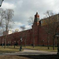 У Кремлевской стены :: Владимир Прокофьев