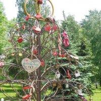Ярославль. Дерево счастья. :: Мила