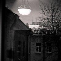 тихий питерский дворик :: Ольга Антипова
