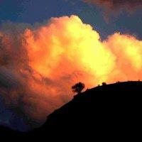 Перед закатом :: Ахмед Овезмухаммедов