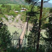 Навесной мост в Чемале (Алтай) :: Petr Milen