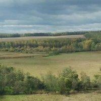Панорама :: Андрей Зайцев