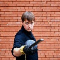 Защищайтесь, сударь! :: Игорь Попов