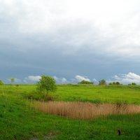 Весна-перед дождём :: Толя Толубеев