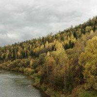 золотая осень :: Дамир Белоколенко