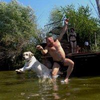 Соревнование по прыжкам в воду. :: Анастасия Макрушина