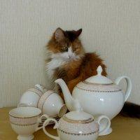 будем пить чай :: Лана Lana