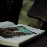 о том, что внутри :: Любовь Стаценко