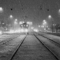 Снегопад :: Александр Максимов