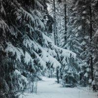 Зима весной :: Арсений Тёмный