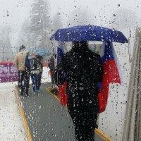 Болельщики под дождем :: Татьяна Копосова