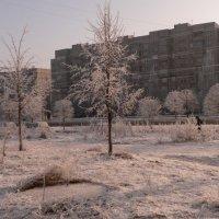 Зима в городе :: Кристина Рыбкина