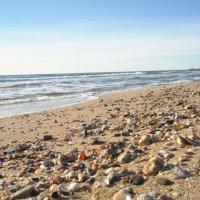 пляж :: александра стаднюк