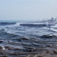 Волнуется море... :: Константин Николаенко