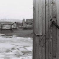На крыше :: Дарья Карпова