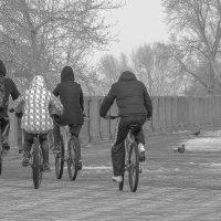 велосипедисты :: Арсений Корицкий
