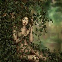 Живое дерево :: Елена Timofeeva