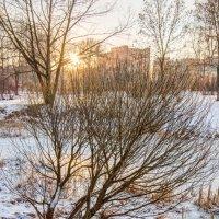 До свидания снежный март :: Алексей Кудрявцев