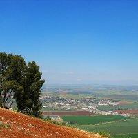 Вид с горы Гильбоа :: Григорий Осадчук