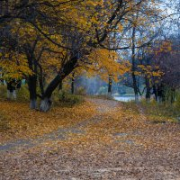 Осень. Донецк :: Олег Зак