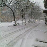 утро 31 октября 2011г. :: Valyshka***) Prosto