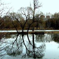 Гляжу в озера синие... :: vkosin2012 Косинова Валентина