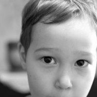 Мои любимые черные глазки :: Галина Жигалова