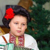 Я играю на гармошке... :: Aleksandr Geraimovich