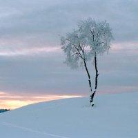Тихий закат :: Валерий Талашов