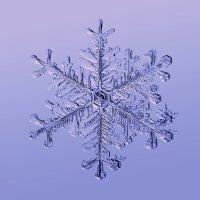 Настоящая снежинка :: Тимофей Черепанов