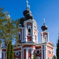 Монастырь Курки :: Владимир Новиков