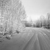 Зимний этюд, про свет и тень... :: Александр Никитинский