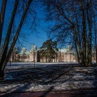 Сосна на фоне замка :: Виктор Перевозников