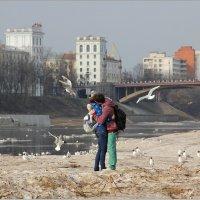 Весенний  поцелуй. :: Роланд Дубровский