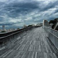 На вершине Сингапура. :: Сава Юрьев