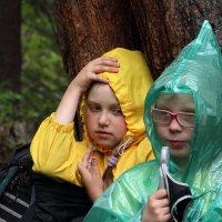 Дождливый поход. :: Larisa Gavlovskaya