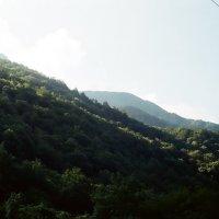 Кавказские горы :: Александр Ханин