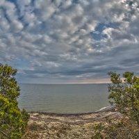 Небо над заливом :: Владимир Самсонов
