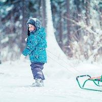 на лесной опушке :: Екатерина Олюнина