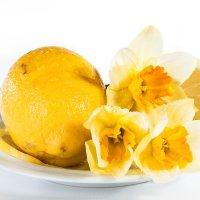 Желтый лимон с нарциссами :: Ирина Токарева