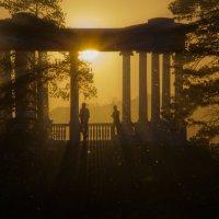 В лучах заката. :: Сергей Адигамов
