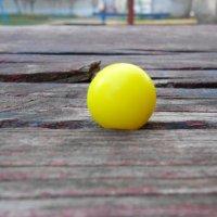 Пейнтбольный шарик. :: Юлия Поседкина