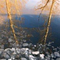 Отражение марта :: Евгений Юрков