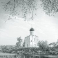 Покрова на Нерли... :: Александр Никитинский
