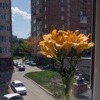 букет жёлтых лилий :: Лидия кутузова