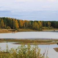 Осень :: Александр Щеклеин